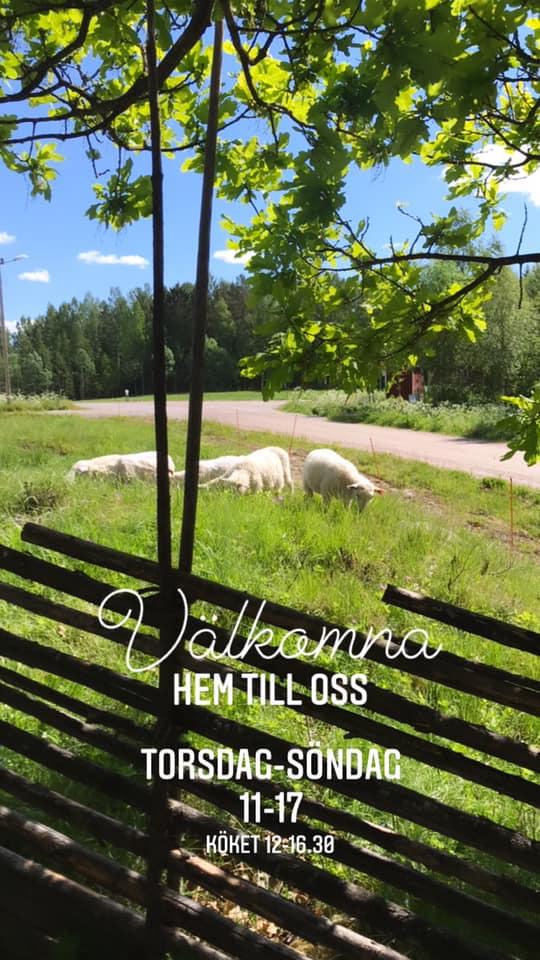 Gårdstunet i Finnfara